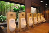 Man's toilet — Стоковое фото