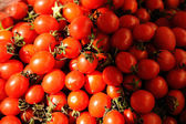 A pile of fresh small tomato — Stock Photo