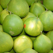 Pomelo (Citrus maxima or Citrus grandis) — Stock Photo