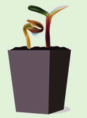 Plant in flower pot — Stock Vector