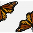 Butterflies — Vector de stock #8746008