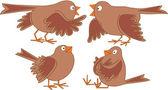Sparrows talk — Stock Vector