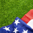 Stock Photo: American flag on green grass