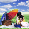 Couple picnic with laptop — Stock Photo