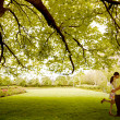 Couple kissing under tree — 图库照片