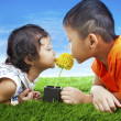 Stock Photo: Kids kissing flower