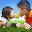 Kids kissing flower — Stock Photo