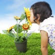 Toddler with sunflower — Stock Photo #9302894