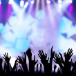 Concert crowd — Stock Photo