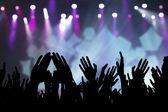 Concert fans — Stock Photo