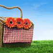 Picnic basket shot in meadow — Stock Photo