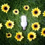 Energy save light bulb — Stock Photo