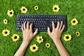 Typing outdoor on grass — Zdjęcie stockowe
