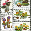 Aquatic plant, postage stamp — 图库照片