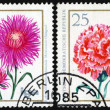 Carnation and aster, postage stamp — Stock Photo