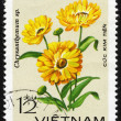 Chrysanthemum flower. Vietnam postage stamp — Stock Photo