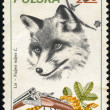 Fox, postage stamp — Stock Photo