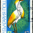 Cattle Egret - Ardeola ibis. Postage stamp Bulgaria — Stock Photo