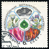 International Botanical Congress. Postage stamp USSR — Stock Photo