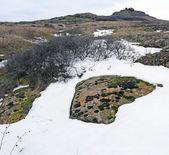 Mountain winter landscape — Stock Photo
