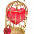 Stock Photo: Heart in a golden cage