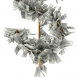 Dollar grows on a tree — Stock Photo