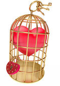 Heart in a golden cage — Stock Photo