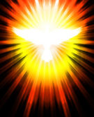 Shining dove with rays — Stock Photo