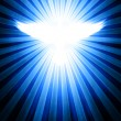 Shining dove with rays — Stock Photo #8561087