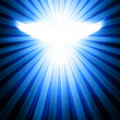 Stock Photo: Shining dove with rays