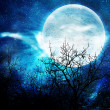 Illustration of the night with a fool moon — Stock Photo