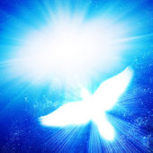 Glowing dove against blue rays — Stock Photo