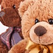 Teddy bear toy picture — 图库照片