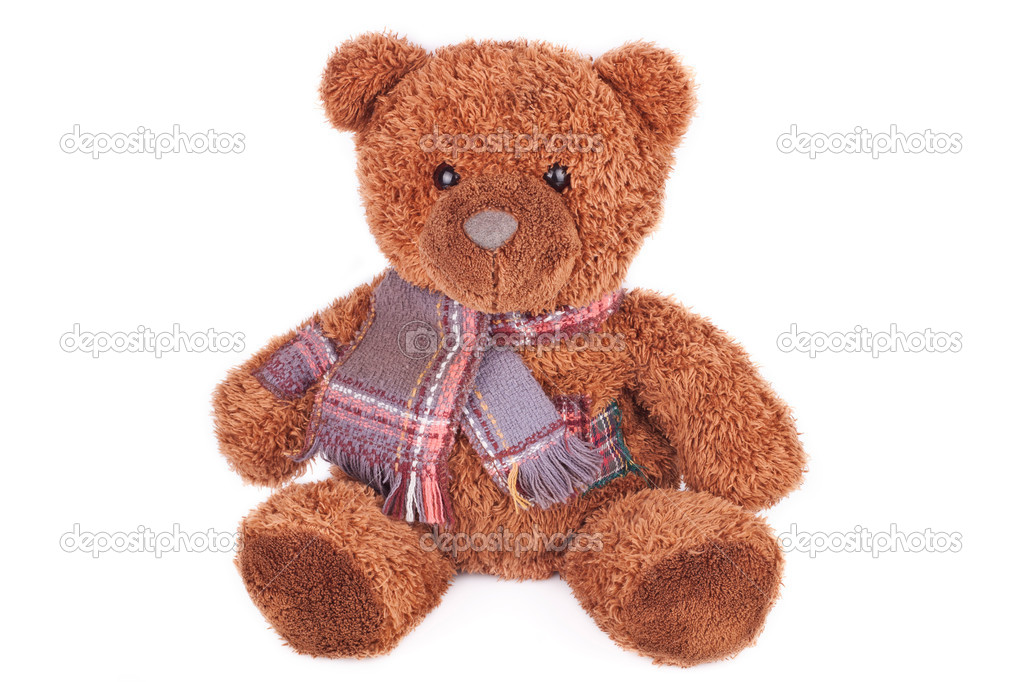 Teddy Bear toy — Stock Photo #9762703