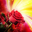 Background with red roses — Stock fotografie