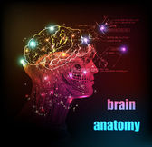 Human brain background light design — Stock Vector