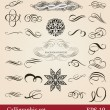 Vector set, calligraphic design elements and page decoration - Vettoriali Stock 