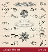 Vector set, calligraphic design elements and page decoration — Stock Vector