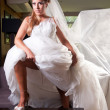 Bride with big veil — Stock Photo