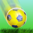 Soccer ball — Stock Photo #8129889