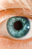 Blue eye — Stock Photo