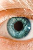 Olho azul — Foto Stock