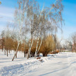 Winter landscape with snow — Foto de Stock