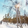 Winter landscape with snow — Stock Photo #9101192