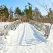 Stock Photo: Winter landscape with snow
