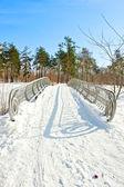 зимний пейзаж с снег — Стоковое фото