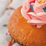 Cupcakes — Stock Photo #9236080