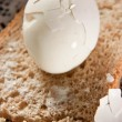 Stock Photo: Eggs with bread