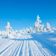 Winter in the finland — Stock Photo #7996082