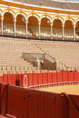 Detail of the Plaza de Toros in Seville — Stock Photo